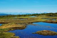 苗場山の池塘, Mount Naeba photo