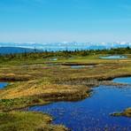苗場山の池塘, Mount Naeba