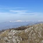 Pleš peak, Svrljig Mountains