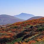 The best autumn leaves, Akita-komaga-take