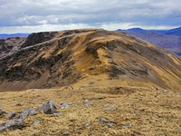 Ben Gorm Saddle photo