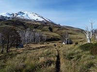 Volcan Puyehue Sendero photo