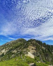 Telegraph Peak from Timber, Telegraph Peak (California) photo