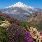 دشت آزو مسیر صعود به قله پاشوره, دماوند