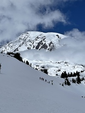 Rainier from Paradise, Mount Rainier photo