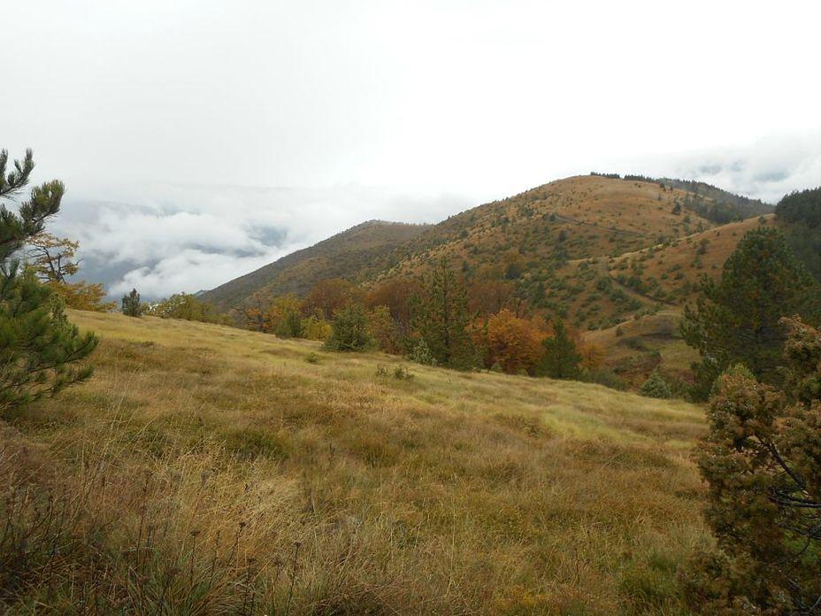 Studena planina weather