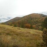 Studena planina