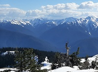 Mount Olympus from Hurricane Hill photo
