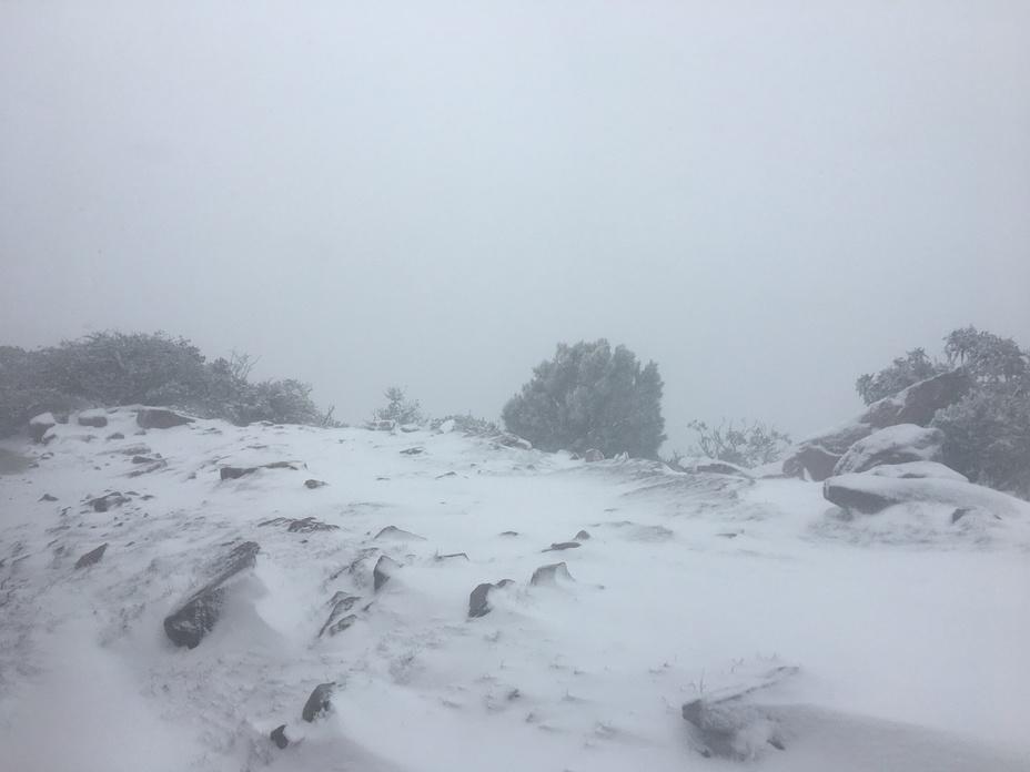 Mount William weather