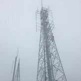 Durwil (Mt William) summit in a snowstorm #3, Mount William