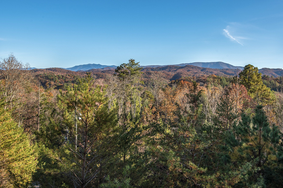 View from porch, Old Black (Great Smoky Mountains)