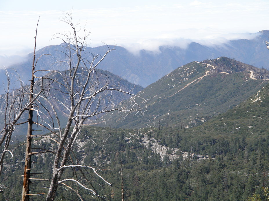 Marine layer pouring over the ridge, South Mount Hawkins