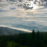 Above the clouds, Mount Mitchell (North Carolina)