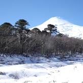Entre Araucarias, Villarrica (volcano)