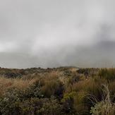 Clag, Mount Egmont/Taranaki