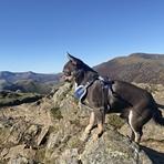 Ragnar on Sail Summit, Sail (Lake District)