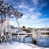 winter wonderland, Cradle Mountain