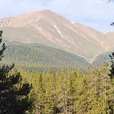 Mt Elbert from temporary north Trailhead, Mount Elbert