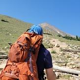 Elbert North Trail treeline, Mount Elbert