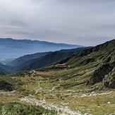 Senjojiki curl, Mount Kisokoma