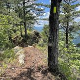 Whispering Pine Cliffs, Pine Mountain (Appalachian Mountains)