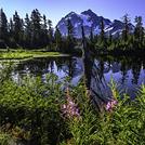 Reflection of Mt Shuksan this summer