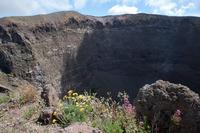 Vesuvius Crater and Summit photo