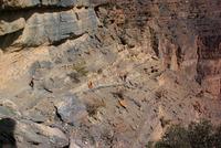 Trekking Route W6, Jebel Shams. Balcony Trek. photo