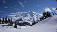 Mt. Rainier, WA, Mount Rainier photo