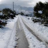 THE ROAD TO TSAPOURNIA (ERYMANTHOS)
