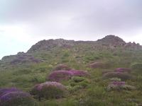 Kolakchal-Topmountain photo