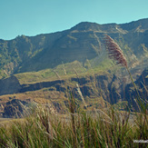 the western wall, Tambora