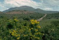 Volcán Ipala photo