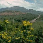 Volcán Ipala