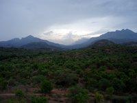 Anaimalai Hills photo