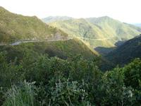 Mount Matthews photo