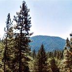Cobb Mountain