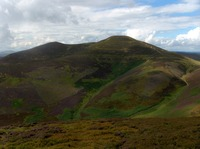 Scald Law photo