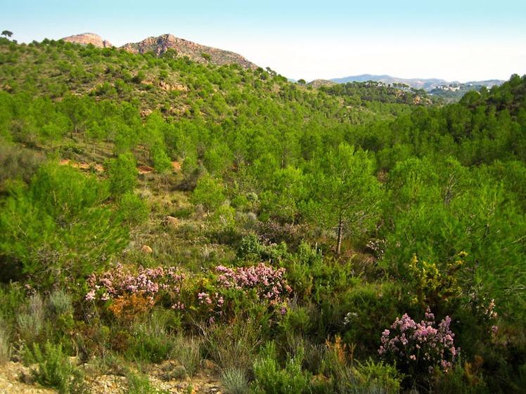 Serra Calderona weather