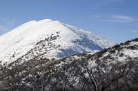 Mount Feathertop photo
