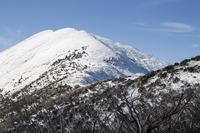 Mount Feathertop photo