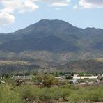 Mingus Mountain