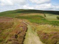 Beacon Hill, Powys photo
