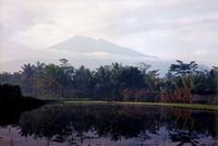 Mount Merbabu photo