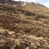 Càrn Dearg (Monadh Liath)