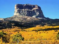 Chief Mountain photo