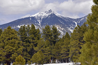 Humphreys Peak photo