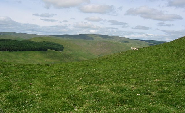 Windy Gyle weather