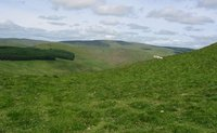 Windy Gyle photo