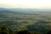 Tamborine Mountain photo